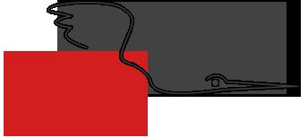 Česká asociace povinných